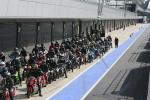 Silverstone parade lap dummy grid
